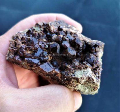 Granate-m000085