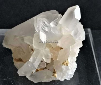 Cuarzo-blanco-pareja-m000043-2-d