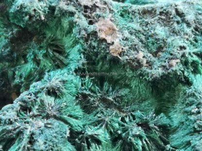 malaquita-verde-congo-m000079-1-g