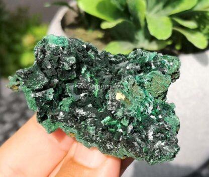 Malaquita-brillante-verde-m000109-a