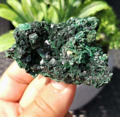 Malaquita-brillante-verde-m000109-e