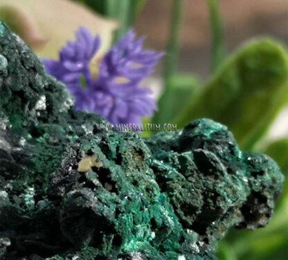 Malaquita-brillante-verde-m000109-f