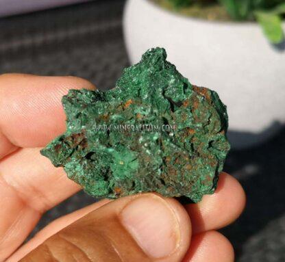 Malaquita-brillante-verde-m000113-e