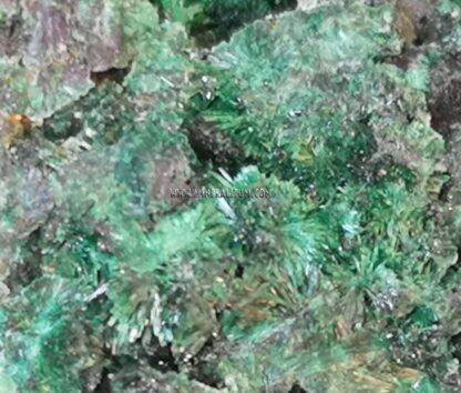 Malaquita-verde-m000107-l
