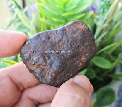 Meteorito-China-m000092-f