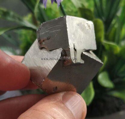 Pirita-cubica-pareja-navajun-m000111-c