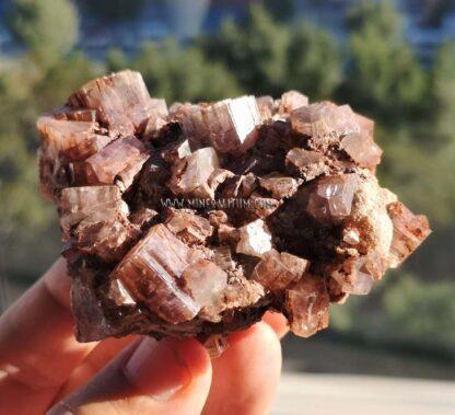 aragonito-compacto-rojizo-m000136-e