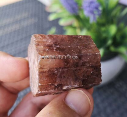 aragonito-rojo-m000133-e