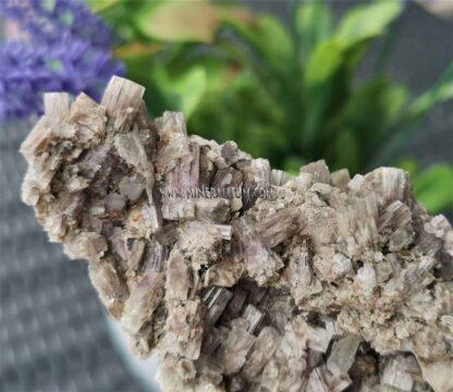 aragonito-violeta-m000132-a