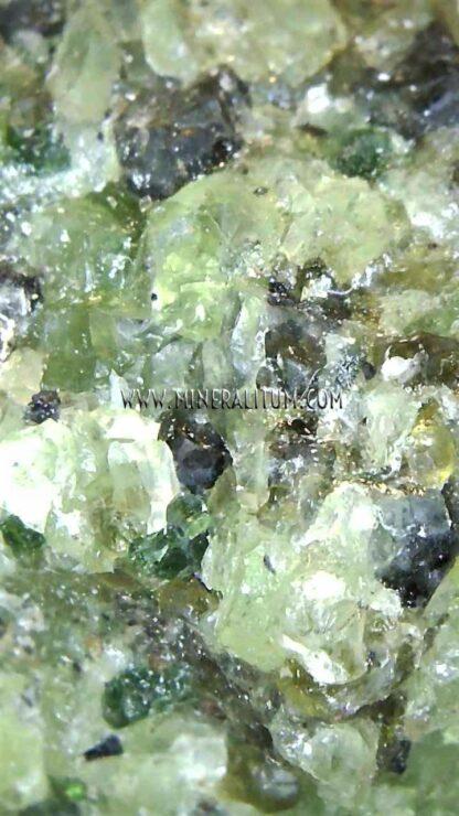 detalle-olivino-m000137-b