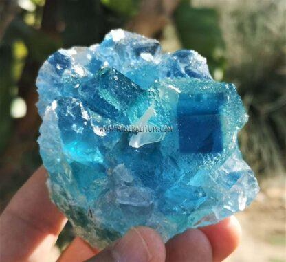 Fluorita-azul-exterior-m00031-1-c