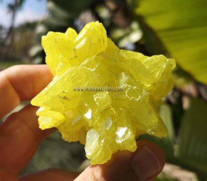 Azufre-Sicilia-amarillo-m000154-a