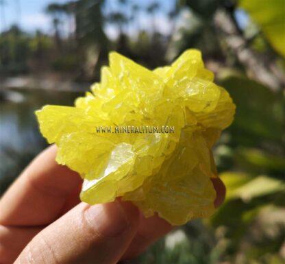 Azufre-Sicilia-amarillo-m000154-d