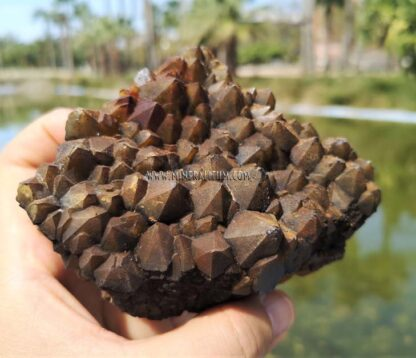 Cuarzo-marrón-m0000157-f