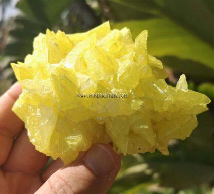 Azufre-sicilia-amarillo-m00000158-a