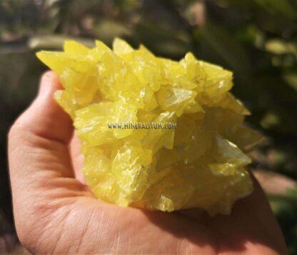 Azufre-sicilia-amarillo-m00000158-c