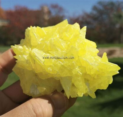Azufre-sicilia-amarillo-m00000158-e