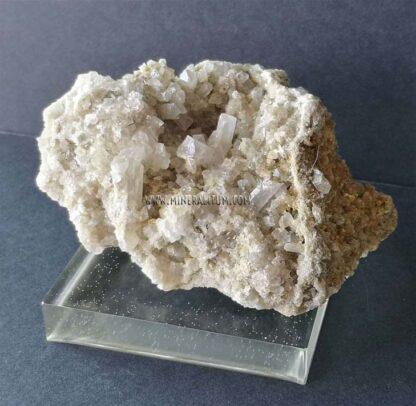 celestina-blanca-ulea-m0000161-f