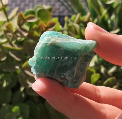 amazonitas-lote-4-verde-m0000169-d