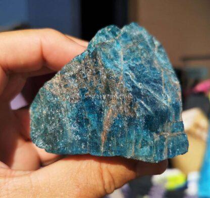 apatito-azul-m0000175-d